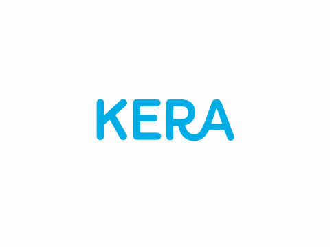 Kera → Fortune 500 Software company